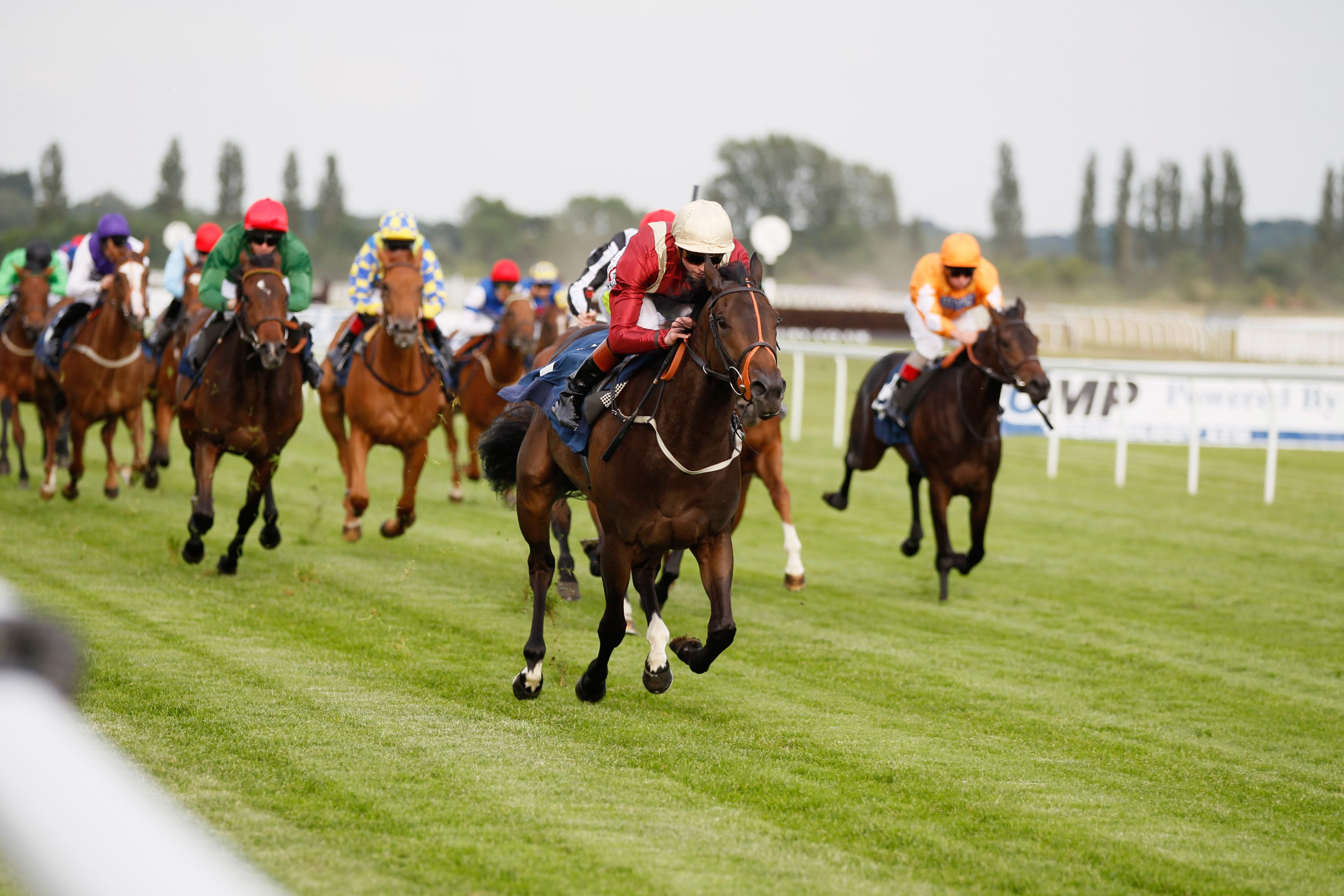 Kendal Mint winning at Newbury in 2013